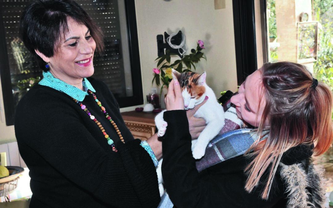 Ces associations au service des animaux