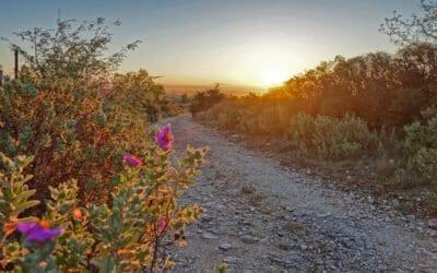 Promenades nature : halte aux déchets !